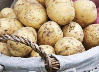 antimetopisete_ti_skoyria_me.patata