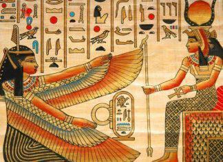papyrus-egypt_tg_1205
