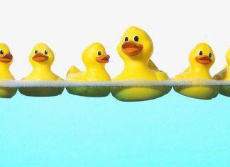 plastic_ducklings_02-696×406