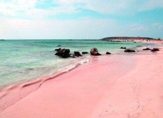 ροζ παραλία